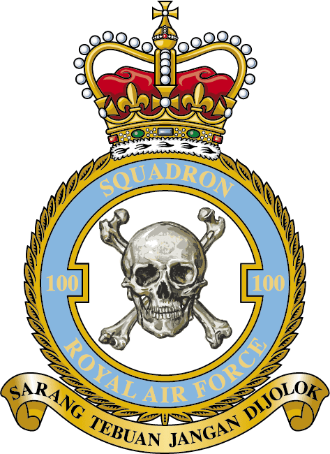 Challenge Coins UK - 100 Squadron RAF